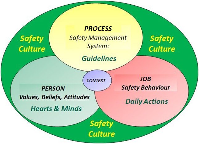 Reciprocal Safety Culture Model